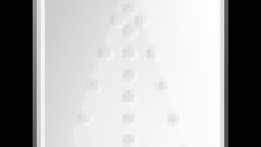Le grand gagnant de Koh-Lanta La guerre des chefs est
