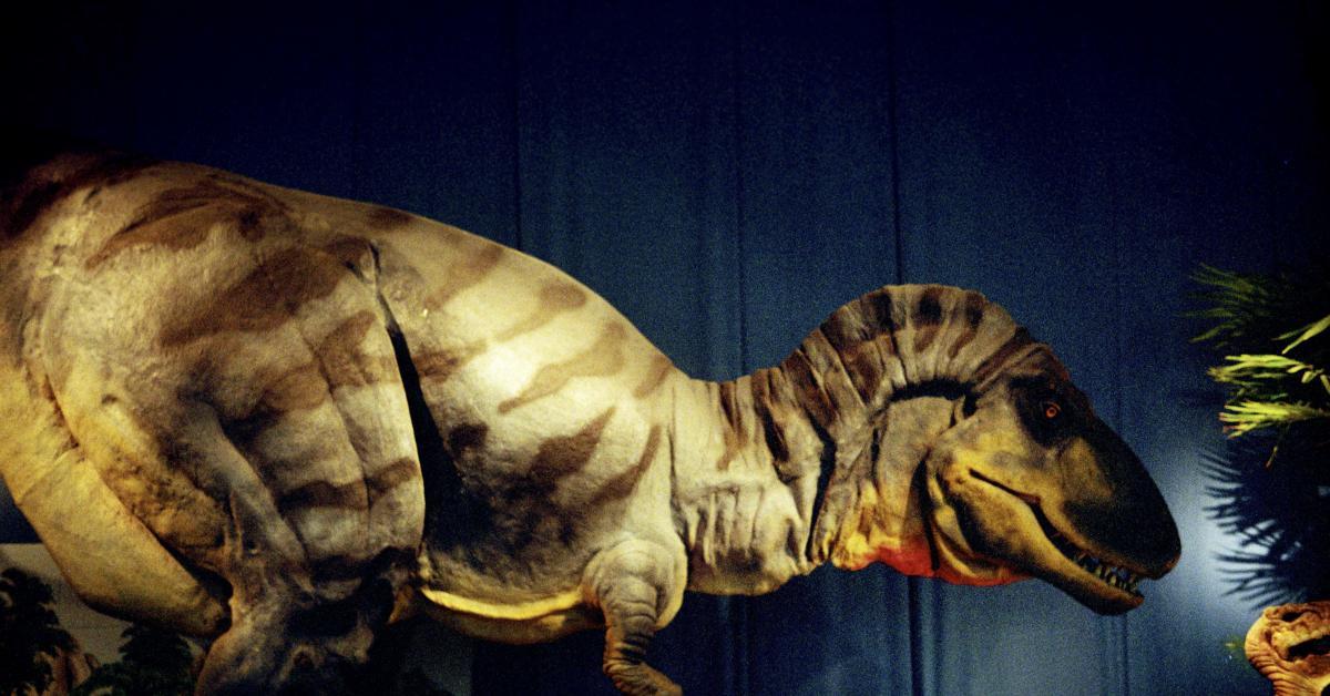 Selon une étude, l'extinction des dinosaures n'a pas été causée par une comète: voici ce qui aurait provoqué leur perte - Sudinfo.be
