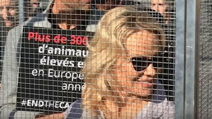 Pamela Anderson enfermée dans une cage pour la cause animale — Paris