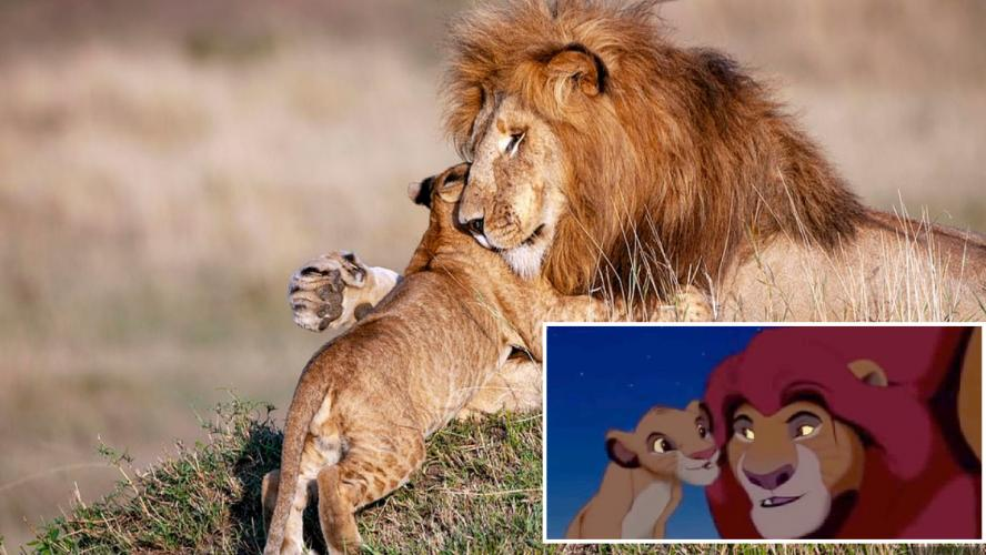 Beyoncé, Childish Gambino, Elton John…la tracklist du Roi Lion suscite des réactions
