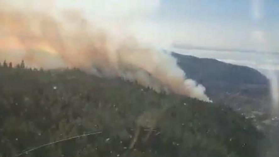 Un gigantesque feu ravage les îles Canaries — Espagne