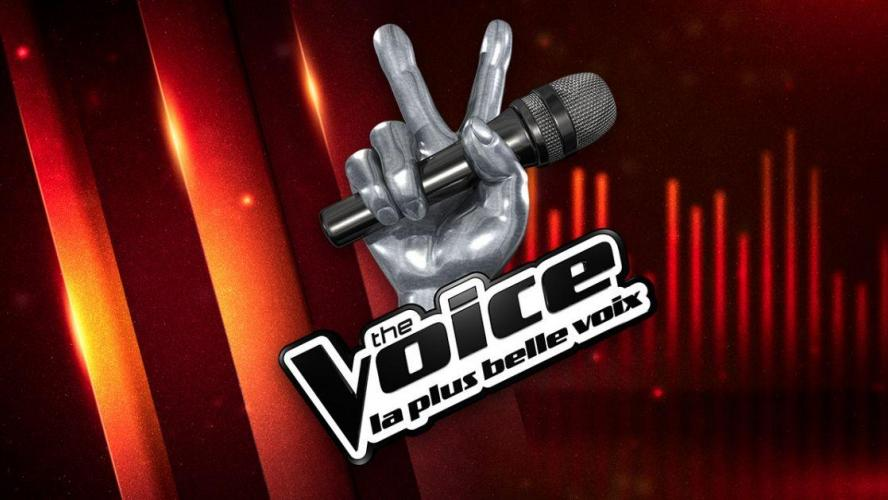 NIkos Aliagas : sa petite combine pour faire durer The Voice !