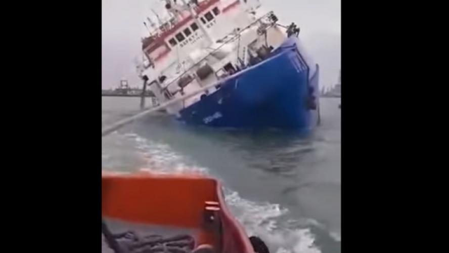 Roumanie: Un cargo chavire avec 14 600 moutons à bord