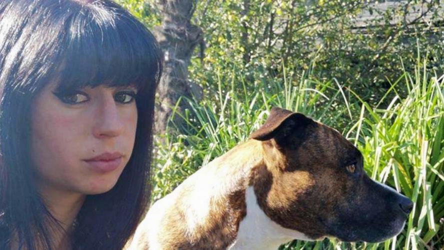 Femme tuée par des chiens : un promeneur et son malinois innocentés