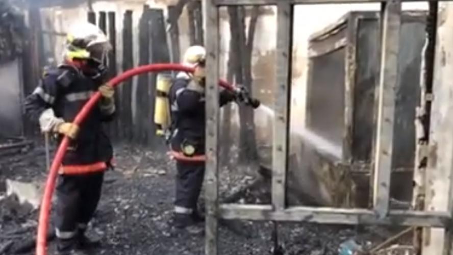 Incendie au zoo de la Flèche : mort d'une cinquantaine d'animaux