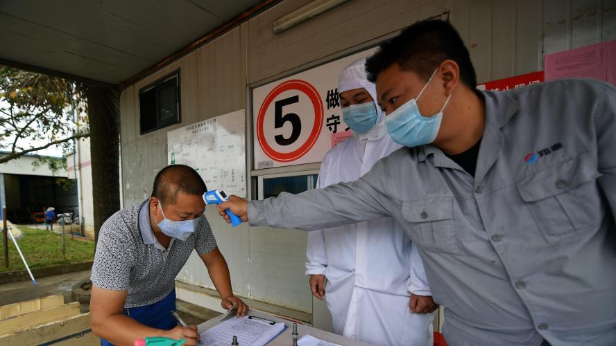 Un autre virus mortel détecté — Chine / Hantavirus