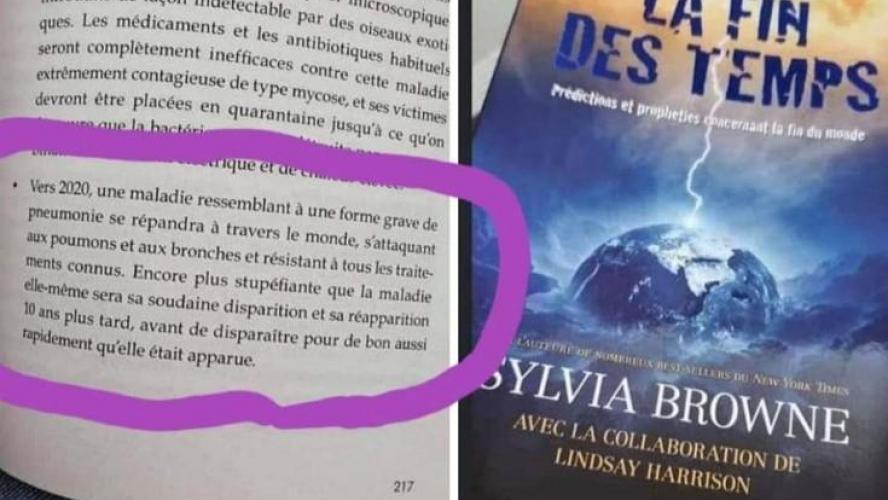 """Cette """"diseuse de bonne aventure"""" avait prédit la COVID-19 dans un livre paru en 2008 ! Coïncidence ? B9723013879Z.1_20200323111551_000+G43FP7M25.1-0"""