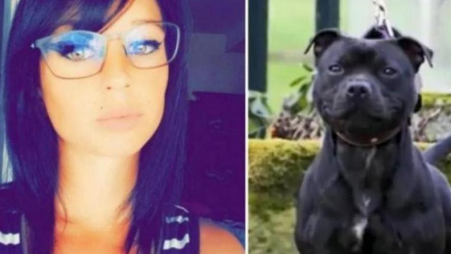 Un rebondissement qui change la face de l'enquête — Affaire Elisa Pilarski