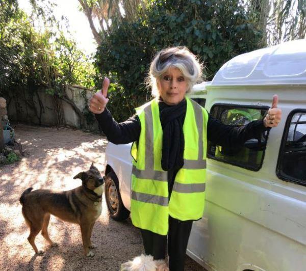 Brigitte Bardot soutient les gilets jaunes